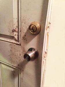 split door edge from break in